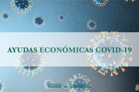 Ayudas económicas del Gobierno para a crisis por el Coronavirus